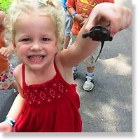 Little girl holding up a small turtle